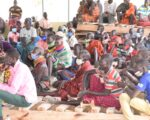 Agro-pastoralist households urged to invest in pasture production